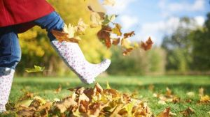 _82940867_f0103470-woman_kicking_autumn_leaves-spl